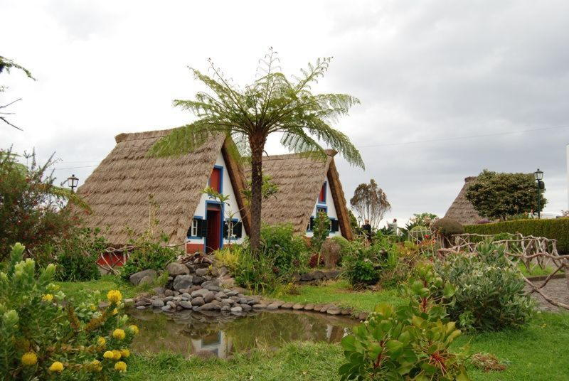 Traditional thatched houses